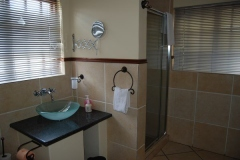 Room-4-shower-and-basin